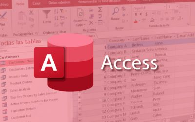 MS VBA Access 365